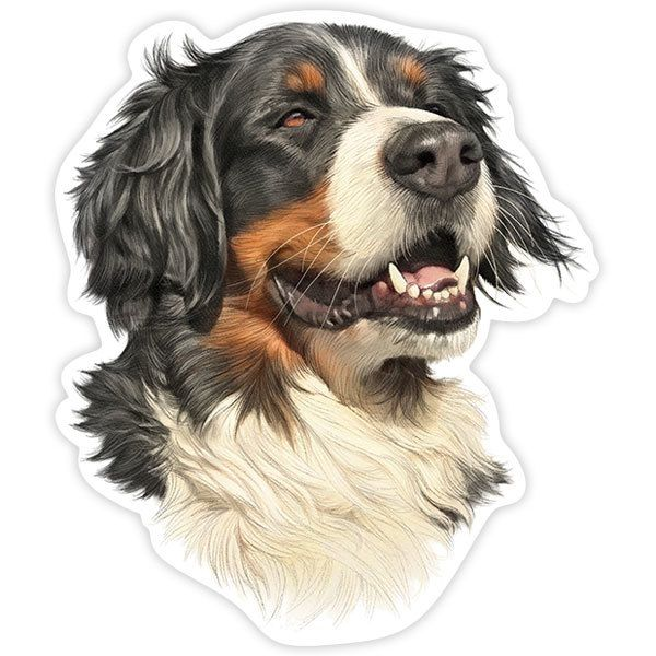 Adesivi per Auto e Moto: Bernese Mountain Dog