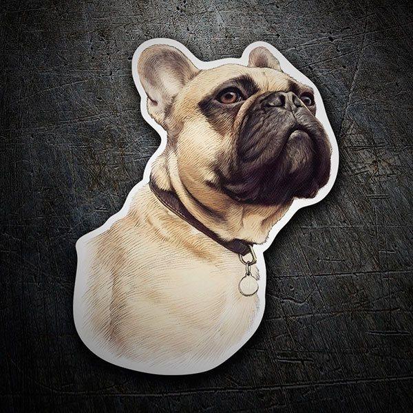 Adesivo cane bulldog francese ocra stickersmurali.com