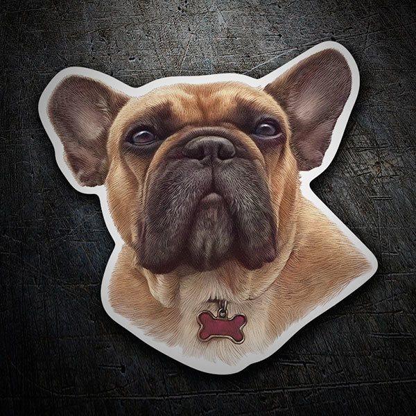 Adesivo cane bulldog marrone francese webwandtattoo.com