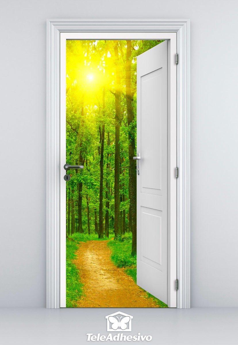 Porta Aperta Sentiero Nel Bosco